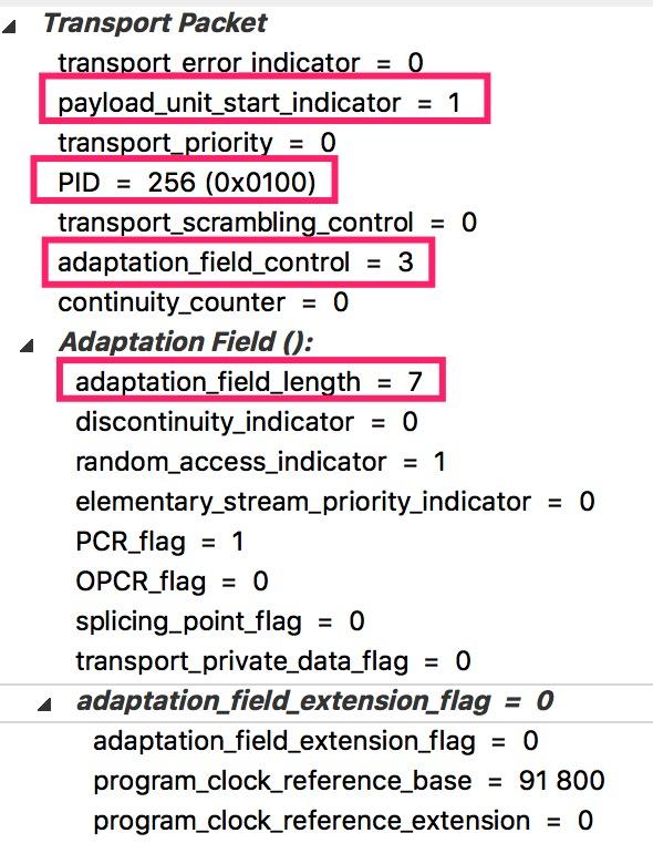 TS-Header-AVC-Packet